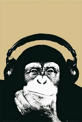 New Monkey with Headphones Steez Poster