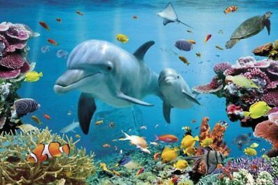 New Underwater Dolphin Fantasy Tropical Dolphins Poster
