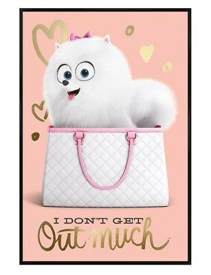 Gloss Black Framed The Secret Life Of Pets I Don't Get Out Maxi Poster 61x91.5cm