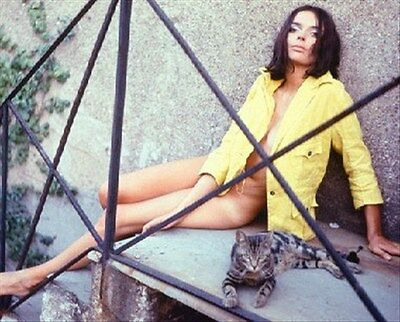 BARBARA STEELE 8x10 Photo iconic pic 259660