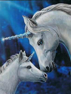 NEW Sacred Love Unicorn Picture by Lisa Parker 25 cm x 19 cm Wall Plaque Fantasy