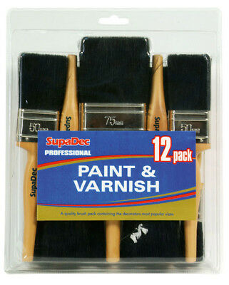 Professional 12 Piece Paint & Varnish Set