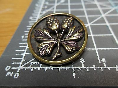 Antique Vintage Large Acorn and Leaves Pattern Picture Button