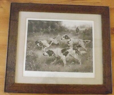 Vintage On the Trail Hunting Dogs Brittany Spaniel Pointers Oak Framed Art Print