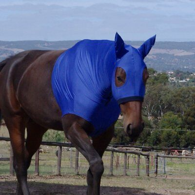 NEW Lycra Show Hoods with Ears Hoods & Bibs Horse Riding Care Grooming