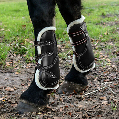 Caboose Equestrian Signature Leather Tendon and Fetlock Boots - Black