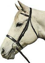 NEW Plain Cavesson Bridle Bridles Horse Riding Care Grooming
