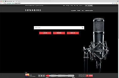 Music Licensing Website