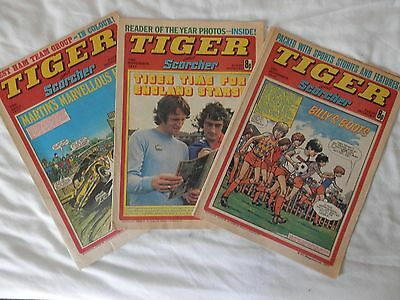 TIGER and SCORCHER 3 issues (19777)