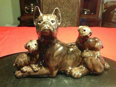 Glass Boxer (Dog) with pups