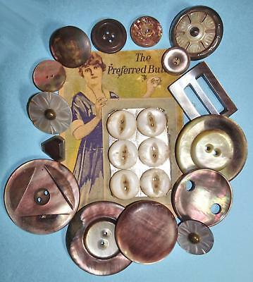 "21 Antique & Vintage Shell Buttons One set on a Card Large 1.4"" to small 1/2"""
