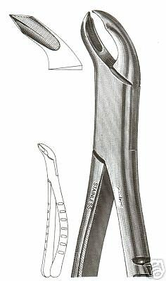 Dental Tooth Extracting Forceps# 217 With Serrated Jaws