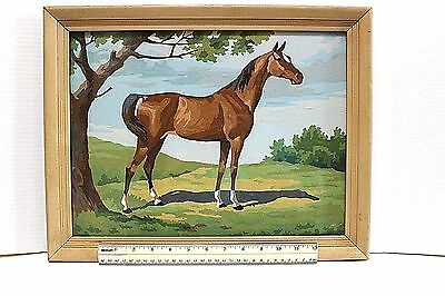 """Vintage Collectible Oil Painting  Paint By Numbers Horse Framed 12"""" X 14"""""""