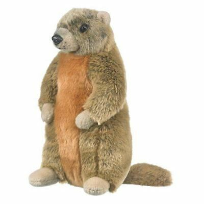 Marmot Groundhog Woodchuck Stuffed Animal Plush Yellow Bellied