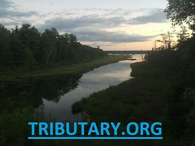 tributary.org domain name river stream creek fork rapids rafting non profit