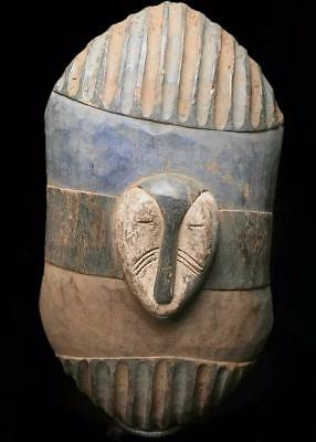 Outstanding  Tribal Large Fang Shield   Mask        --- Gabon
