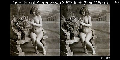 16 Akt - Stereofotos klassik Nude, Paris 1910, Lot 2