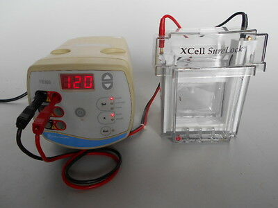 USED Fisher FB 300 Electrophoresis Power Supply & XCell Surelock Gel Unit