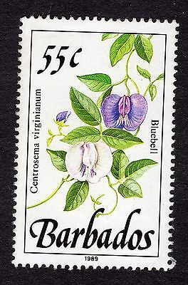 1989 Barbados 55c Bluebell SG898 FINE USED R32064