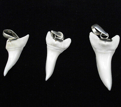 GENUINE LARGE MAKO SHARK TOOTH FOR SALE CAPPED IN SILVER WHOLESALE PRICE s-me
