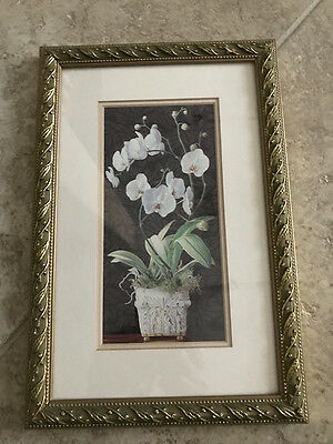 """Cedar Creek Gold Framed Orchid Picture Print 8"""" X 12"""""""