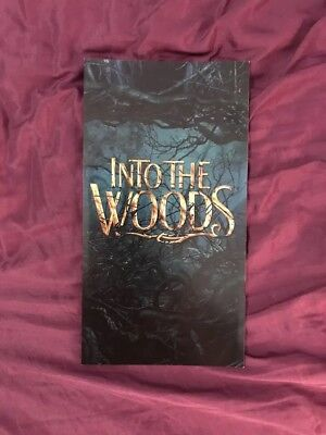 "Into The woods ""For Your Consideration"" Pamphlet"