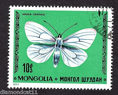 1977 Mongolia Butterflies Black veined White 10m SG1080 FINE USED R27821
