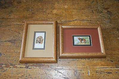 Gallagher LTD/John Player Tobacco CARD Otter Hound #21 & #19 Framed/Matted Stamp
