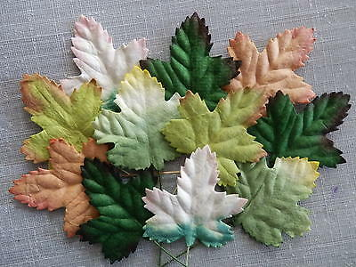 50 MAPLE LEAVES Various MIXED Packs SCRAPBOOKING Cards CRAFT Embellishments