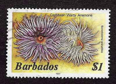 1987 Barbados $1 warty anemone FINE USED R31865