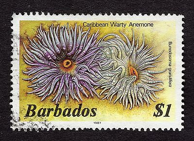 1987 Barbados $1 warty anemone FINE USED R31864