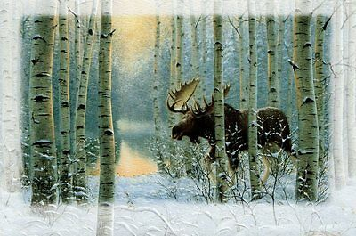 16 Embossed Boxed Christmas Cards Moose Birch Trees Bull Snow