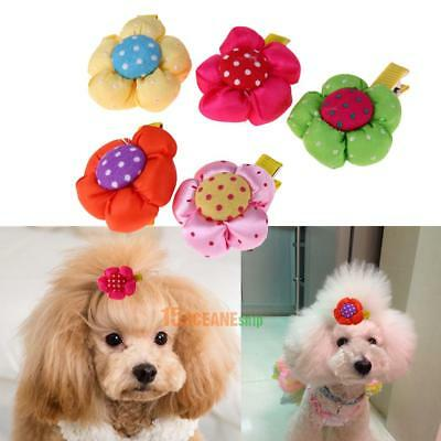 5pcs Pet Puppy Dog Cat Hair Bows Clips Pumpkin Style Hairpin Grooming Accessory