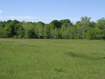 Lake Of The Ozarks Missouri Vacant Land Real Estate Benton Co, Mo 5.4 Ac Mol