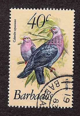 1979 Barbados 40c Red necked pigeon SG631b FINE USED R31159