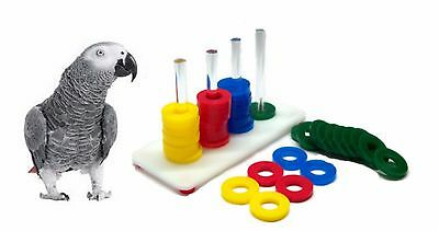 Adventure Bound Acrylic Teacher Toy Abacus Parrot Learning Game African Grey 762