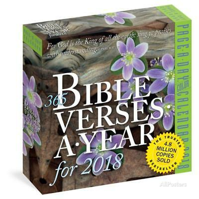 365 Bible Verses-A-Year Color Page-A-Day - 2018 Boxed Calendar Calendars - 6x6