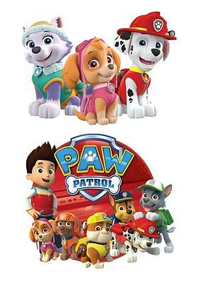 Large Paw Patrol Iron on Transfers for light items