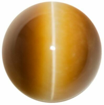 Natural Extra Fine Golden Honey Cat's Eye - Round Cabochon - South Africa - AAA+