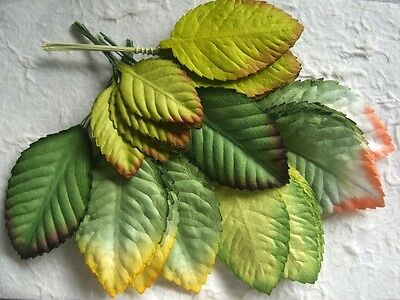50 Mulberry Paper LEAVES: MPL/F Mixed sizes 40-70mm Scrapbooking embellishments