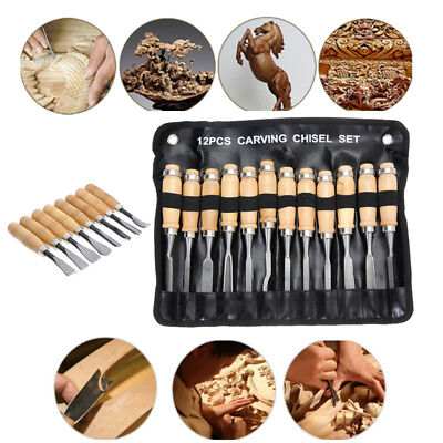 12Pc Wood Carving Hand Chisel Carver Woodworking Lathe Professional Gouges W/Bag