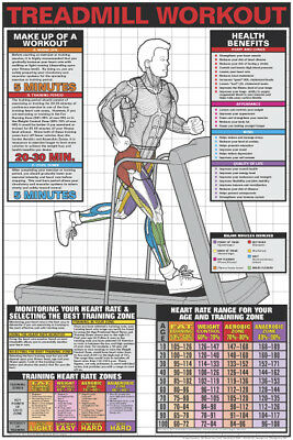 TREADMILL RUNNING WORKOUT Cardio Fitness Professional Wall Chart POSTER