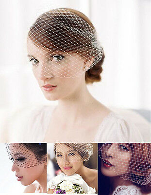 VINTAGE BRIDAL WEDDING BIRDCAGE FACE VEIL NET FASCINATOR with two Side Combs