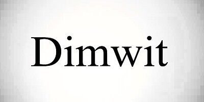 dimwit.net - domain for sale