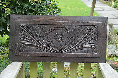 Original antique English hand carved oak panel with mythical beast circa.1800