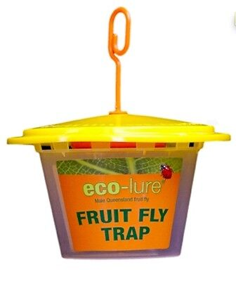 eco-lure male Queensland Fruit Fly Trap - Pest Control