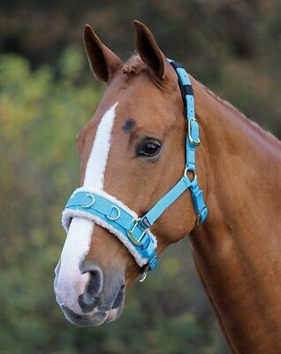 Shires Fleece Lined Lunge Cavesson Blue Pony