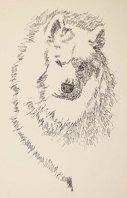 SAMOYED DOG ART Kline Print #84 DRAWN FROM WORDS Your dogs name added free. Gift