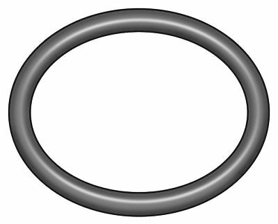 O-Ring, Buna N, 19mm OD, PK100 - 1RJA7