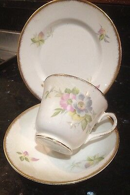 SALISBURY TEA CUP TRIO. Pale Pink / Pastel, country Flowers/ Floral, Gold Trim